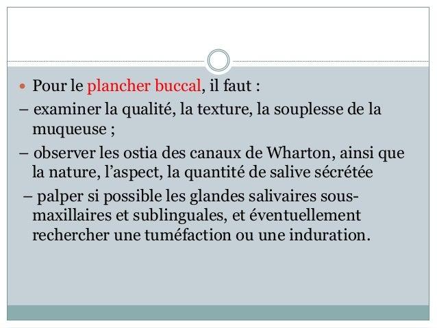  Pour le plancher buccal, il faut : – examiner la qualité, la texture, la souplesse de la muqueuse ; – observer les ostia...
