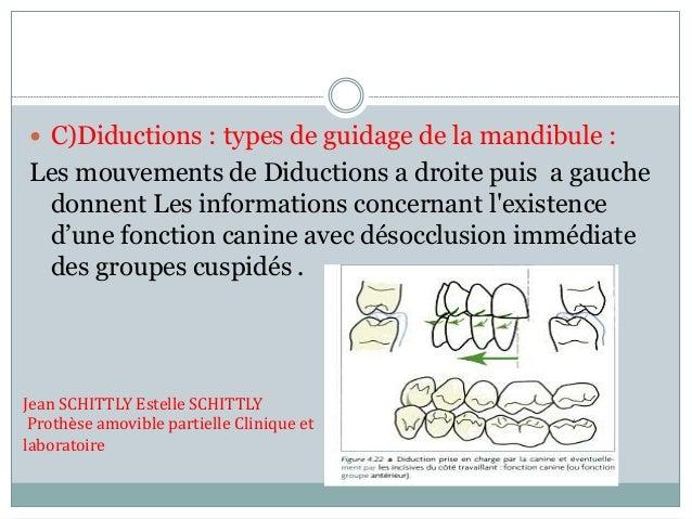  C)Diductions : types de guidage de la mandibule : Les mouvements de Diductions a droite puis a gauche donnent Les inform...