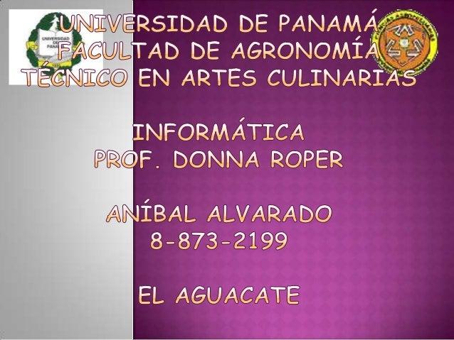  INTRODUCCIÓN  PROPIEDADES  AGUACATE HASS  AGUACATE HASS EN PANAMÁ  PRINCIPALES PRODUCTORES DE AGUACATE (2011)  GRÁF...