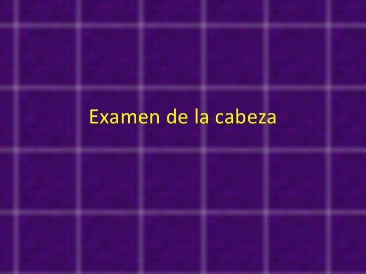 Examen de la cabeza