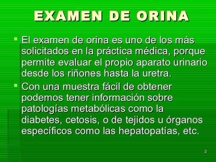 EXAMEN DE ORINA El examen de orina es uno de los más  solicitados en la práctica médica, porque  permite evaluar el propi...