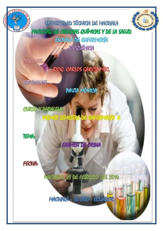 TEMA:  EXAMEN DE ORINA OBJETIVO: Adquirir conocimientos para realizar un examen físico-químico de orina. MATERIALES  Pape...
