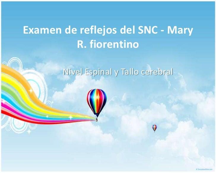 Examen de reflejos del SNC - Mary R. fiorentino<br />Nivel Espinal y Tallo cerebral<br />
