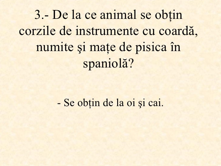 3.-  De la ce animal se obţin corzile de instrumente cu coardă, numite şi maţe de pisica în spaniolă ? -  Se obţin de la o...