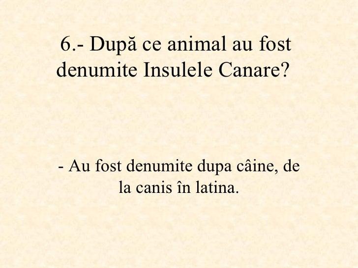 6.-  După ce animal au fost denumite Insulele Canare ?   -  Au fost denumite dupa câine, de la canis în latina.