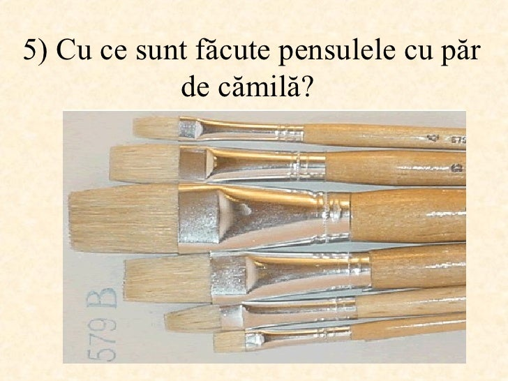5)  Cu ce sunt făcute pensulele cu păr de cămilă ?