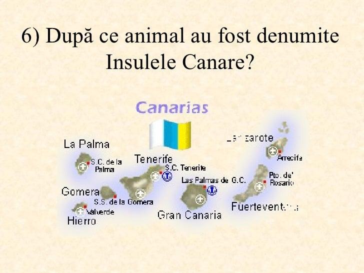 6)  După ce animal au fost denumite Insulele Canare ?