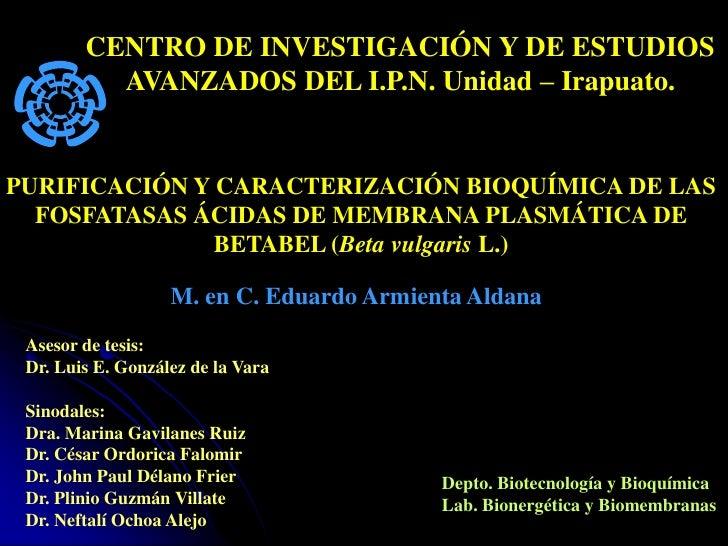 CENTRO DE INVESTIGACIÓN Y DE ESTUDIOS           AVANZADOS DEL I.P.N. Unidad – Irapuato.   PURIFICACIÓN Y CARACTERIZACIÓN B...