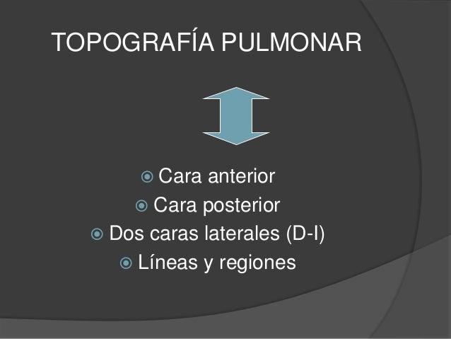 Examen físico Respiratorio Slide 2
