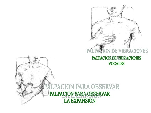 Examen fisico for Cuarto espacio intercostal