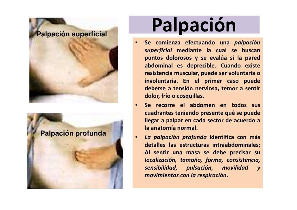 Excelente Prueba De La Anatomía En El Embarazo Imagen - Anatomía de ...