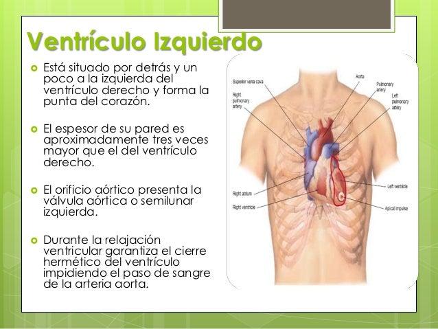 Examen físico de corazón