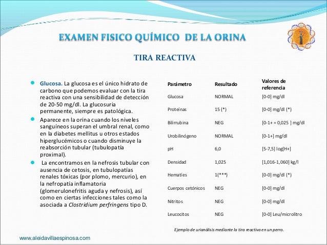 Examen General de la Orina. Examen Físico Químico.