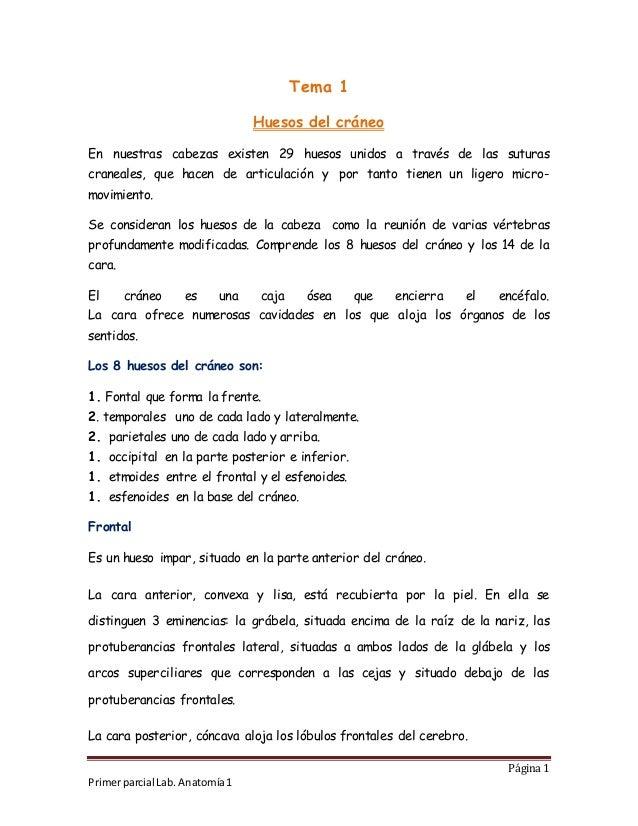 Vistoso Edu Lugar Del Examen De Anatomía Adorno - Anatomía de Las ...