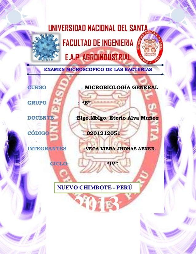 UNIVERSIDAD NACIONAL DEL SANTA FACULTAD DE INGENIERIA E.A.P AGROINDUSTRIAL EXAMEN MICROSCOPICO DE LAS BACTERIAS  CURSO  : ...