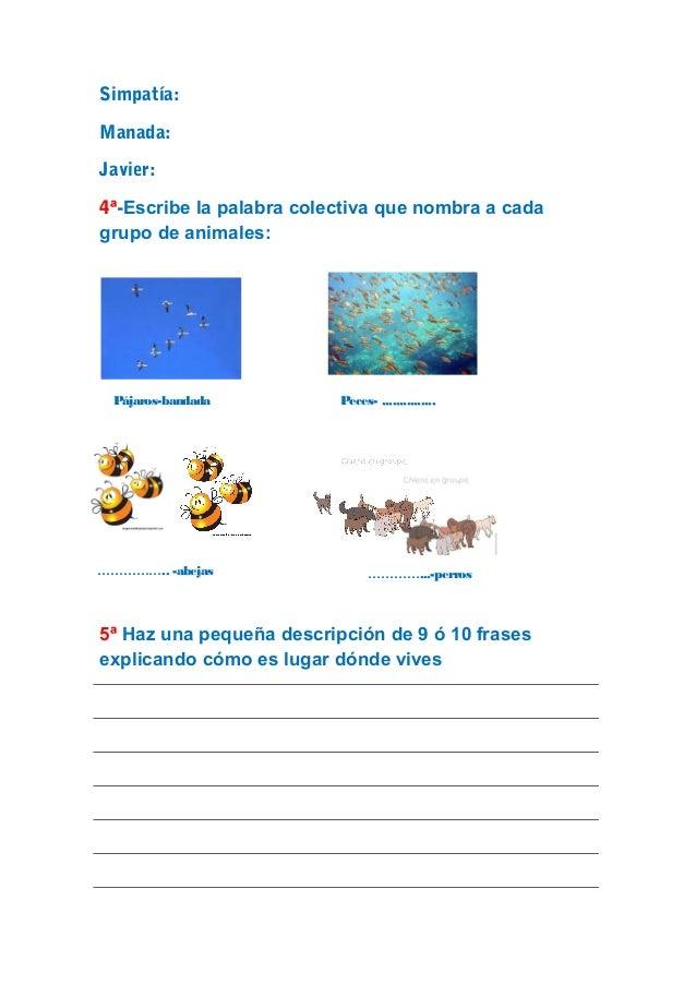 Examen Lengua 3º de Primaria Slide 3