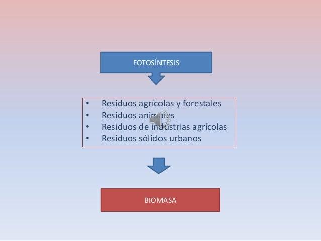 • Residuos agrícolas y forestales • Residuos animales • Residuos de industrias agrícolas • Residuos sólidos urbanos FOTOSÍ...