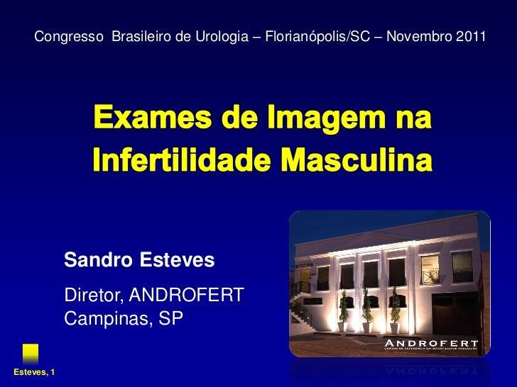 Congresso Brasileiro de Urologia – Florianópolis/SC – Novembro 2011             Sandro Esteves             Diretor, ANDROF...