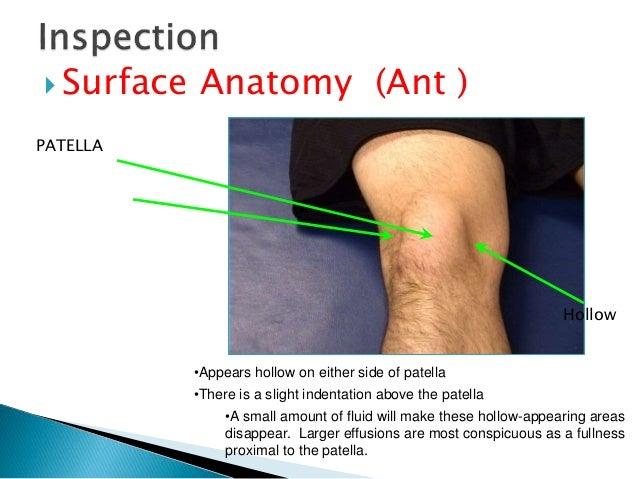 Examination of knee psmc 42 ccuart Choice Image