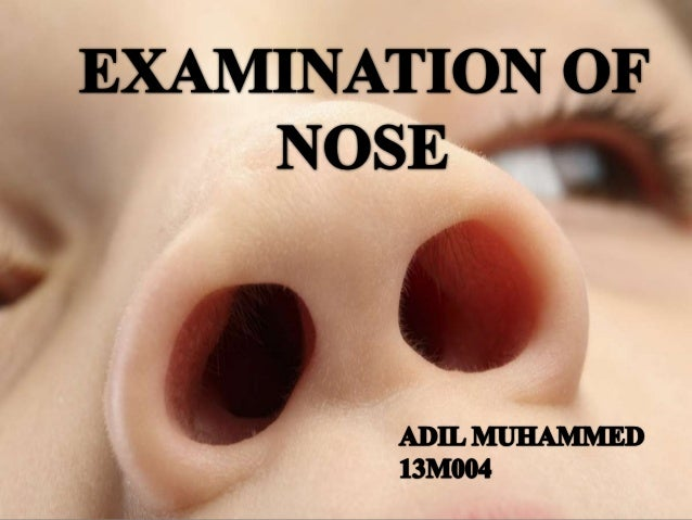 INTRODUCTION • Full nose examinations assess the function, airway resistance and occasionally sense of smell. It includes ...