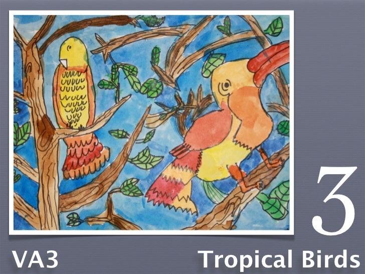 VA3               3      Tropical Birds