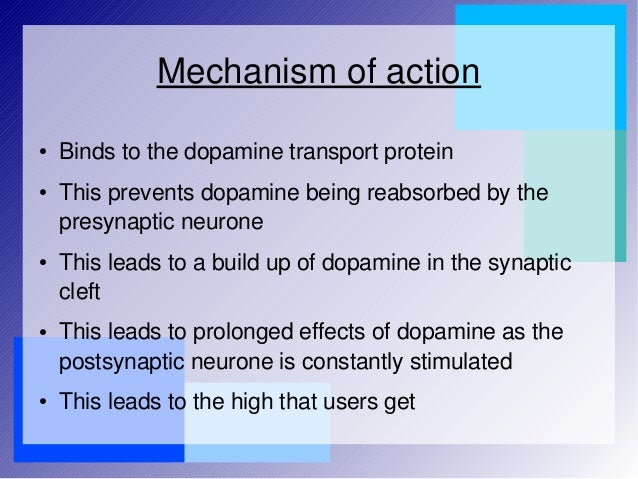 mechanism of action of cocaine psychology essay Best answer: in point of fact, all three have very different mechanisms of action in the brain they are also differently addictive the biochemical effects of each are very different in the brain, as are the effects on behavior of course, each has different legal status currently in addition, these three.