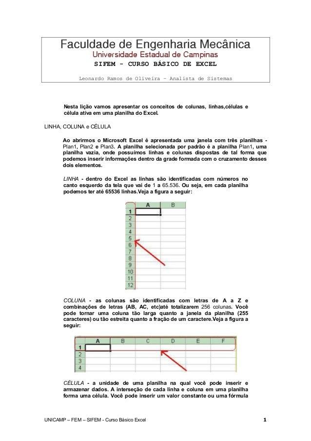 SIFEM - CURSO BÁSICO DE EXCEL Leonardo Ramos de Oliveira – Analista de Sistemas Nesta lição vamos apresentar os conceitos ...