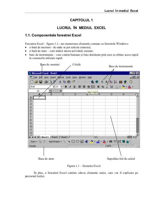Lucrul în mediul Excel  CAPITOLUL 1 LUCRUL ÎN MEDIUL EXCEL 1.1. Componentele ferestrei Excel Fereastra Excel – figura 1.1....