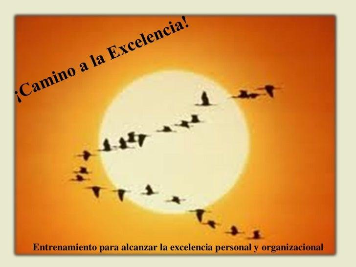 Entrenamiento para alcanzar la excelencia personal y organizacional