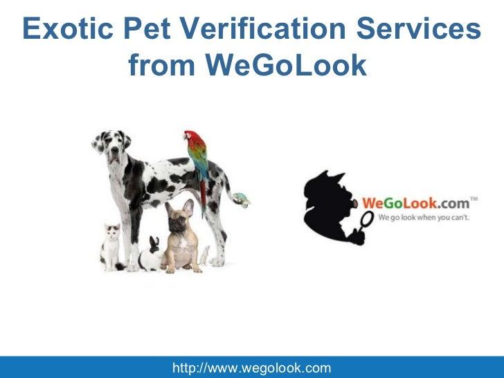 Exotic Pet Verification Services from WeGoLook  http://www.wegolook.com