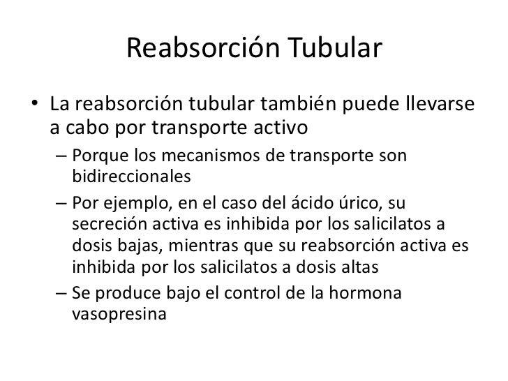 ReabsorcionTubular<br />La reabsorción tubular se produce mayormente por difusión pasiva <br />debido a la reabsorción de ...