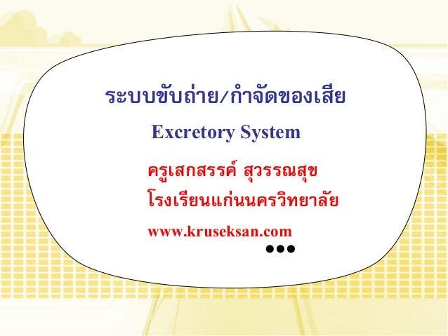 ระบบขับถ่าย/กาจัดของเสีย Excretory System ครูเสกสรรค์ สุวรรณสุข โรงเรียนแก่นนครวิทยาลัย www.kruseksan.com