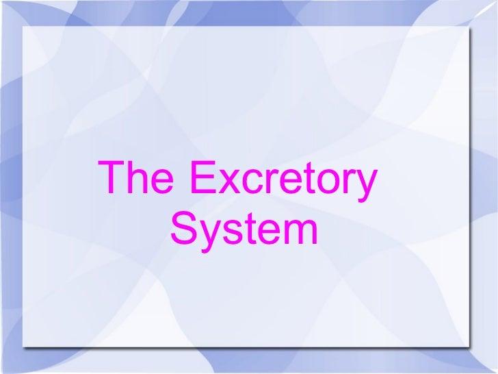 The Excretory  System
