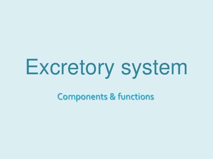 Excretory system<br />Components & functions<br />