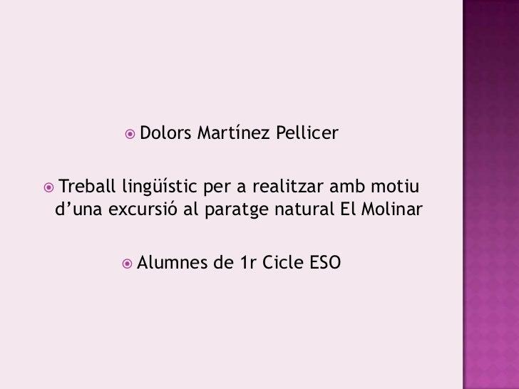 Dolors Martínez Pellicer<br />Treballlingüístic per a realitzarambmotiud'unaexcursió al paratge natural El Molinar<br />Al...