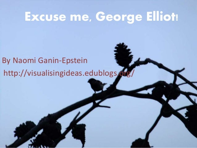 Excuse me, George Elliot!  By Naomi Ganin-Epstein  http://visualisingideas.edublogs.org/