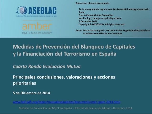 Principales conclusiones, valoraciones y acciones prioritarias. Medidas de Prevención del Blanqueo de Capitales y la Finan...