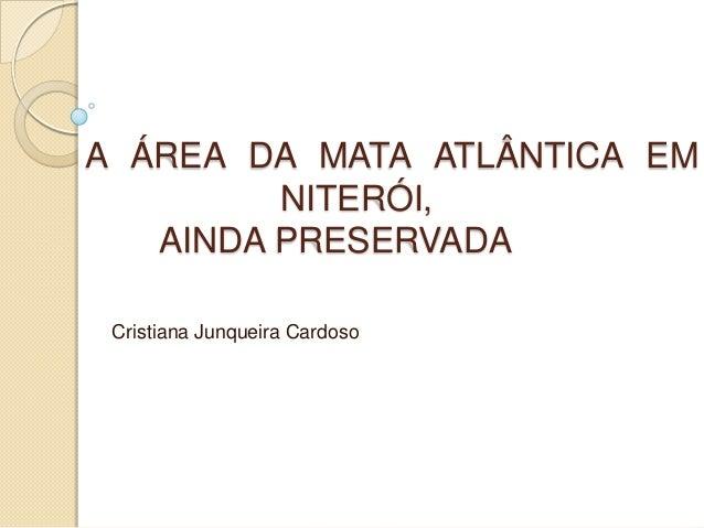 A ÁREA DA MATA ATLÂNTICA EM         NITERÓI,   AINDA PRESERVADA Cristiana Junqueira Cardoso