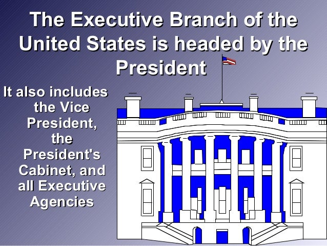 the executive branch of the u s goverment essay U s history the three branches of government his 301 01-23-2012 in 1787, the united states founding fathers arranged the constitutional convention to.