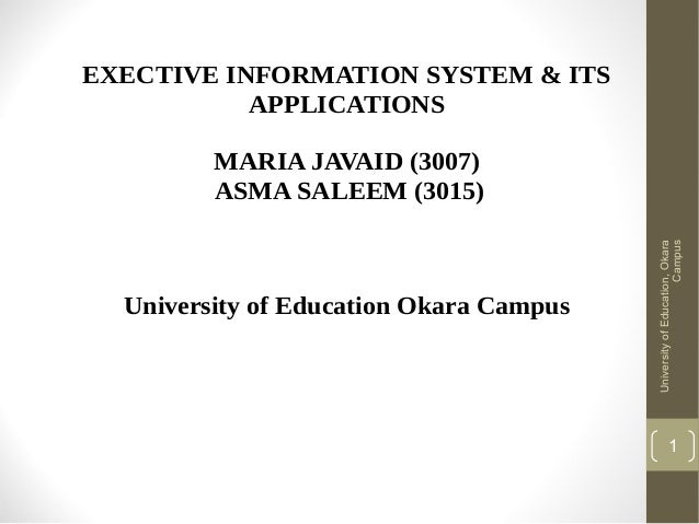 EXECTIVE INFORMATION SYSTEM & ITS APPLICATIONS  University of Education Okara Campus  University of Education, Okara Campu...