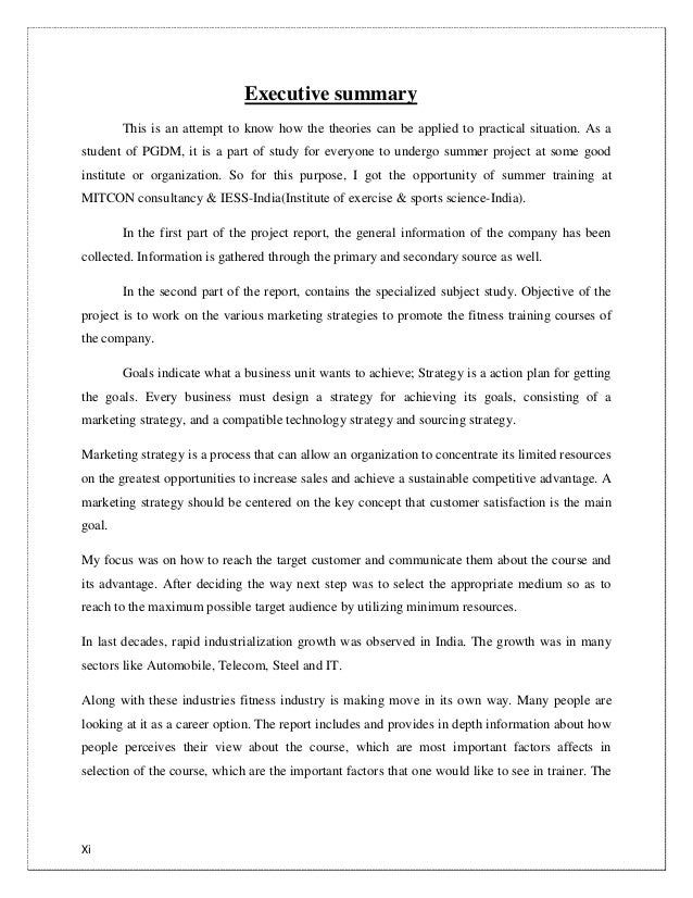 essay on international relations theories amish essay paper essay     TECHNICAL REPORT WRITING QURATULAIN MUGHAL BATCH IV ISRA UNIVERSITY