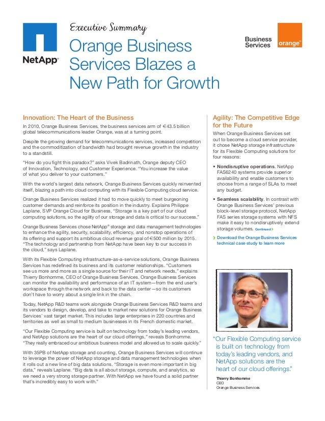 Executive Summary  Orange Business Services Blazes a New Path for Growth Innovation: The Heart of the Business In 2010, Or...