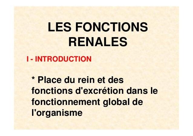 LES FONCTIONSRENALESI - INTRODUCTION* Place du rein et desfonctions dexcrétion dans lefonctionnement global delorganisme