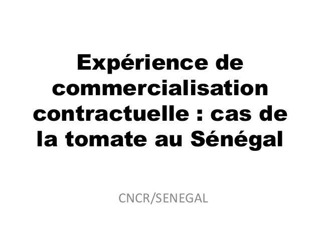 CNCR/SENEGAL Expérience de commercialisation contractuelle : cas de la tomate au Sénégal