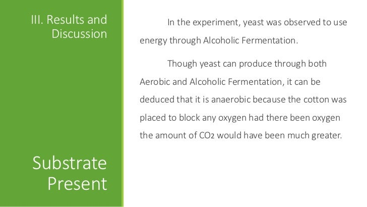 Investigation of Fermentation