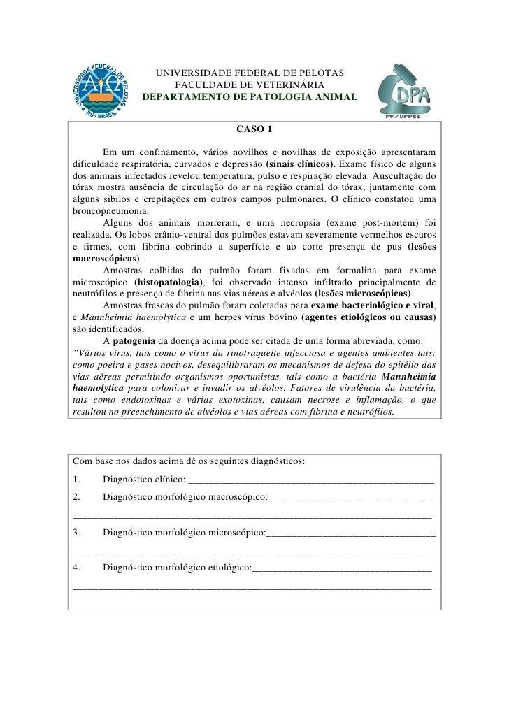 UNIVERSIDADE FEDERAL DE PELOTAS                      FACULDADE DE VETERINÁRIA                 DEPARTAMENTO DE PATOLOGIA AN...