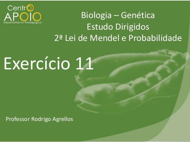 Biologia – Genética Estudo Dirigidos 2ª Lei de Mendel e Probabilidade  Exercício 11 Professor Rodrigo Agrellos