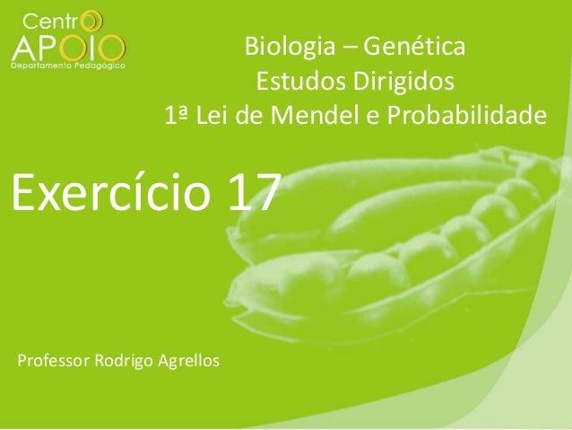 Biologia – Genética Estudos Dirigidos 1ª Lei de Mendel e Probabilidade  Exercício 17 Professor Rodrigo Agrellos