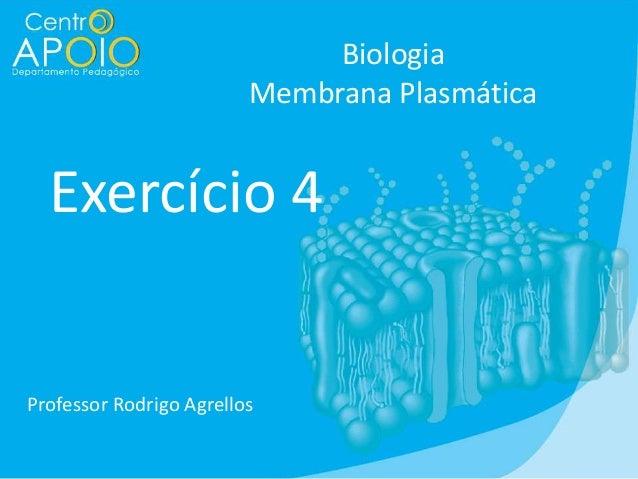 Biologia Membrana Plasmática  Exercício 4  Professor Rodrigo Agrellos