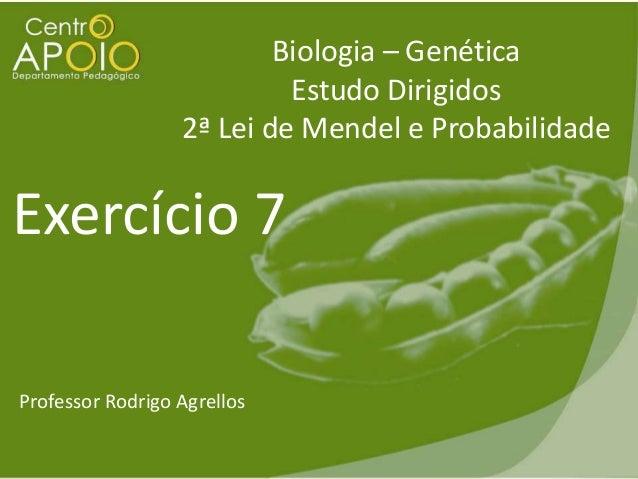 Biologia – Genética Estudo Dirigidos 2ª Lei de Mendel e Probabilidade  Exercício 7 Professor Rodrigo Agrellos